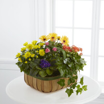 The FTD® Gentle Blossoms™ Baske